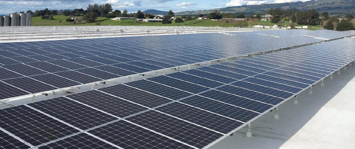 Lagunitas Brewing Company Solar Array